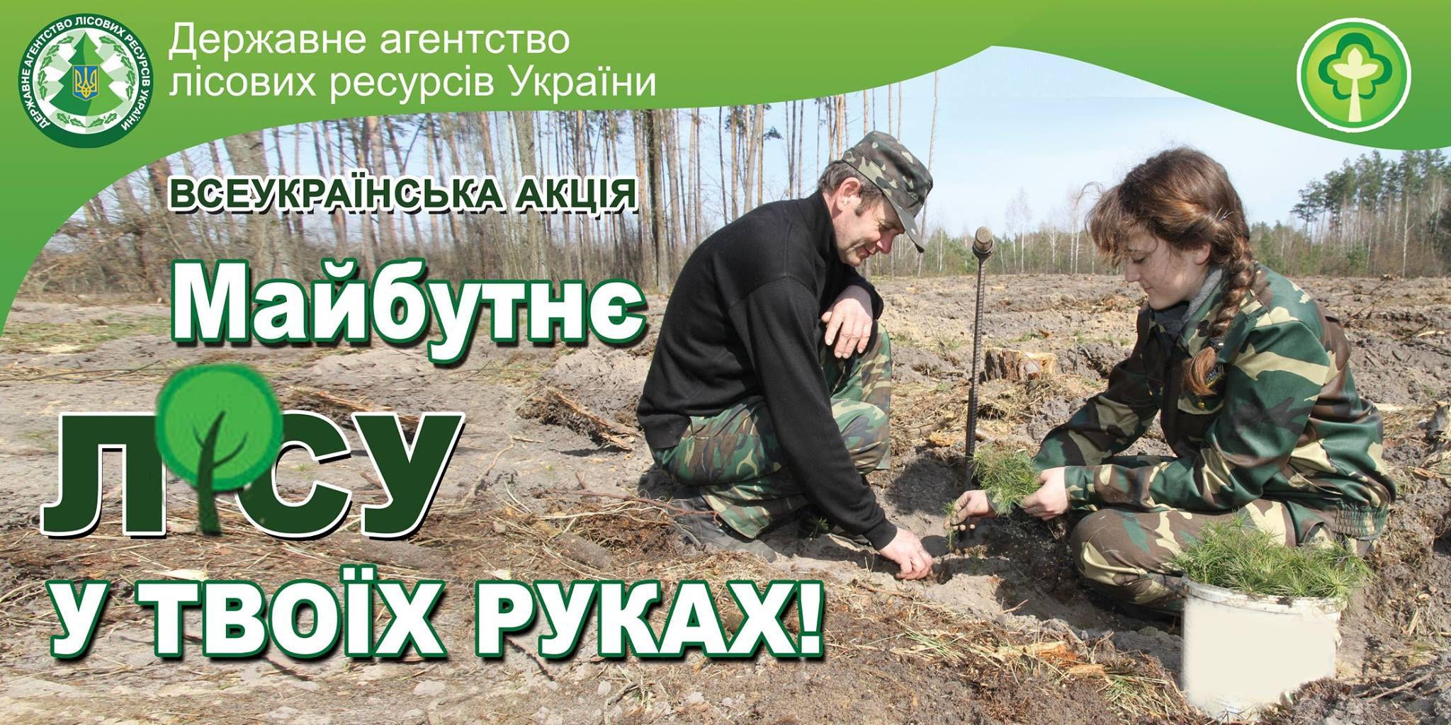 Долучитися до акції «Майбутнє лісу в твоїх руках» може кожен