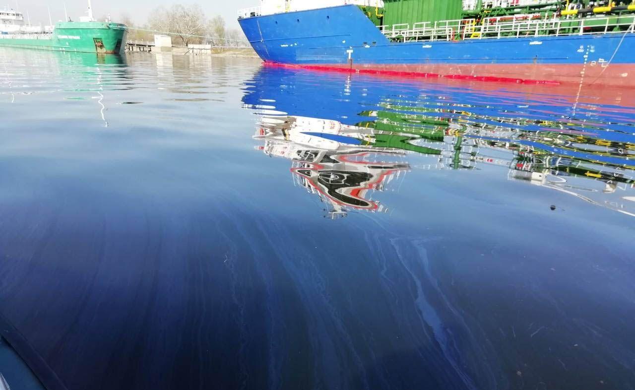 Попливла до нерестовища отрута
