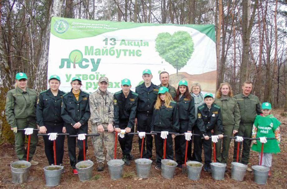 Около семи тысяч сосен посадили юные лесоводы