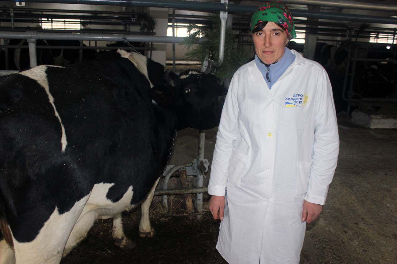 Молока хочется всем, а коров — нет