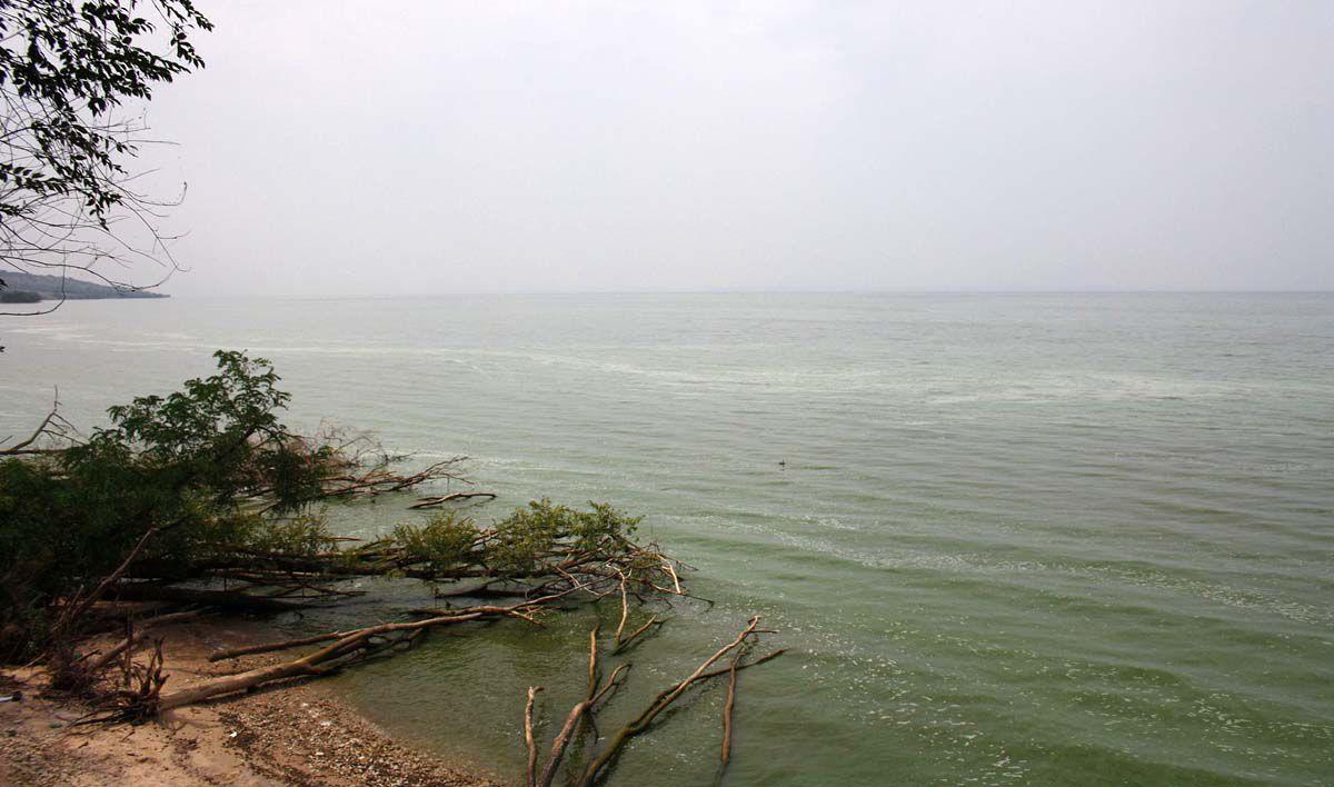 Каховське море перетворюється на великий ставок