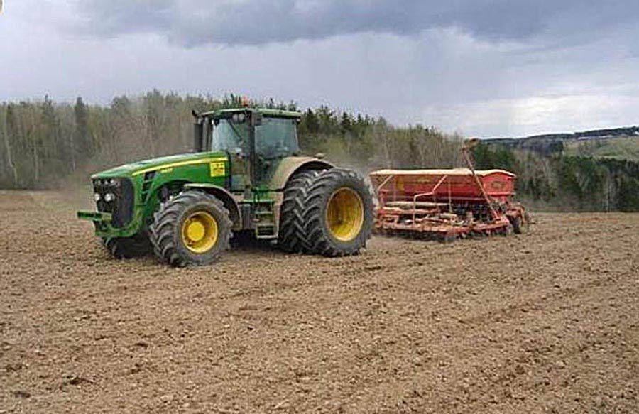 Львівщина. Кукурудза змагається з соняшником