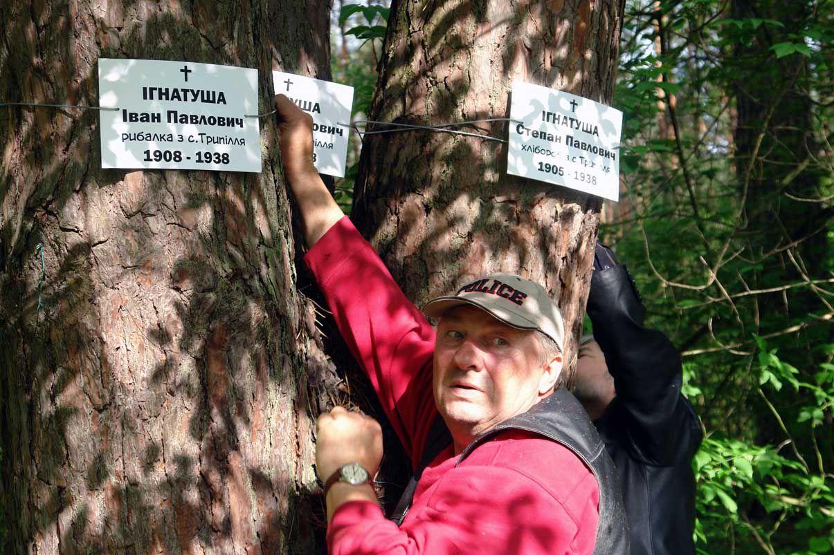 Толока: убрали Быковнянский лес