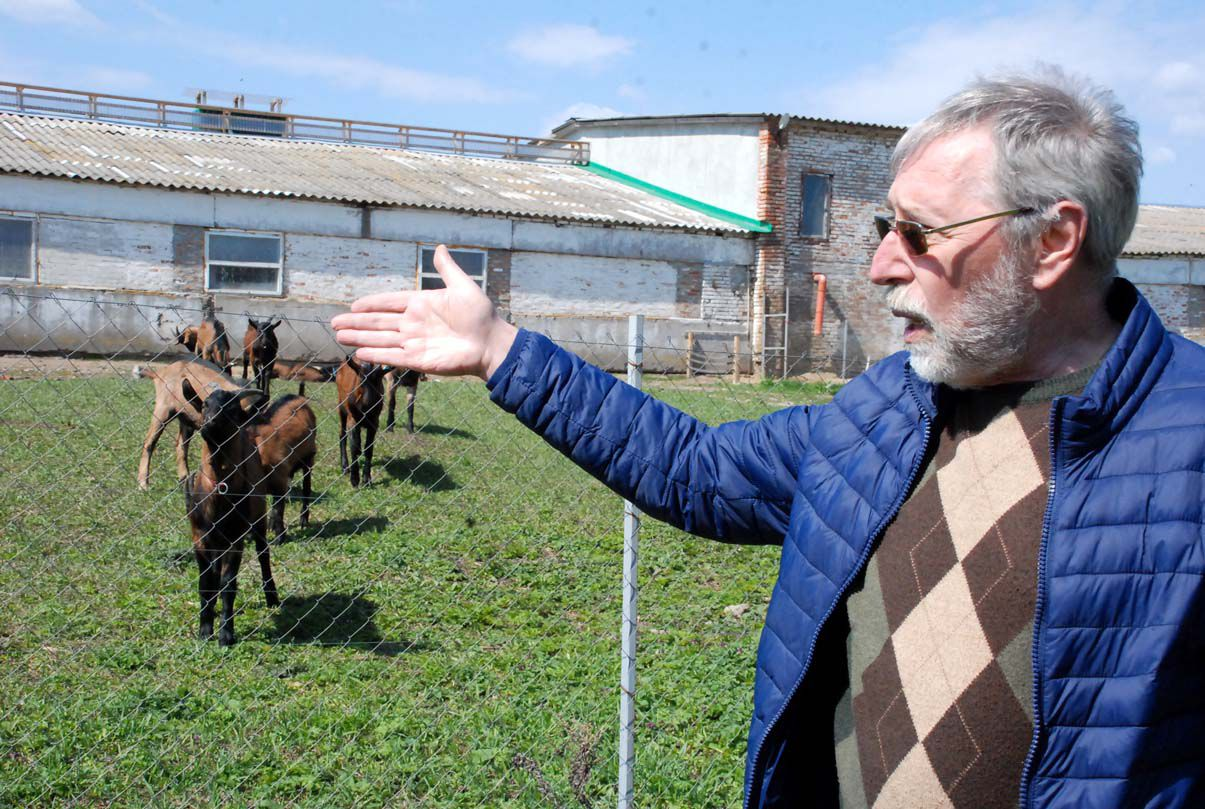 Козиній фермі слід «бігти» швидко