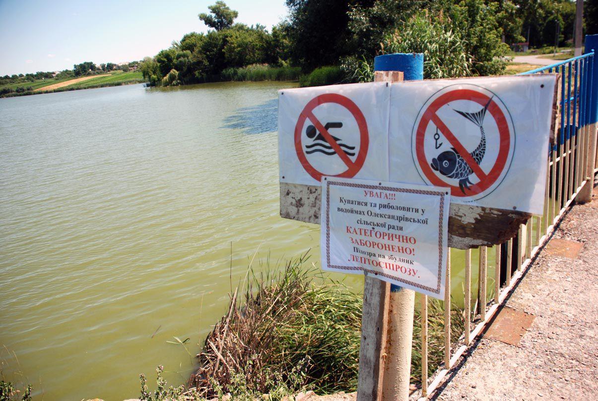 Не знаешь брода.., или Кто должен заботиться о чистоте наших водоемов?