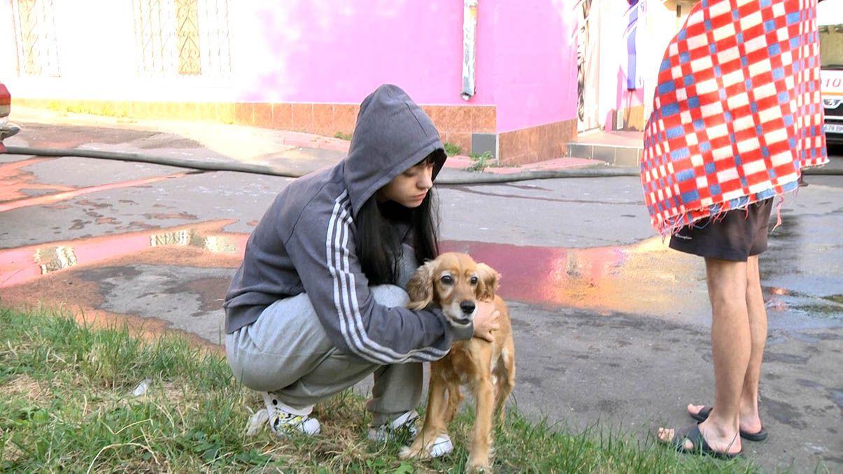Собака спасла и хозяев, и соседей