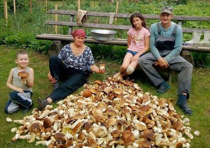 Рекордне «тихе полювання» —  92 кілограми білих грибів