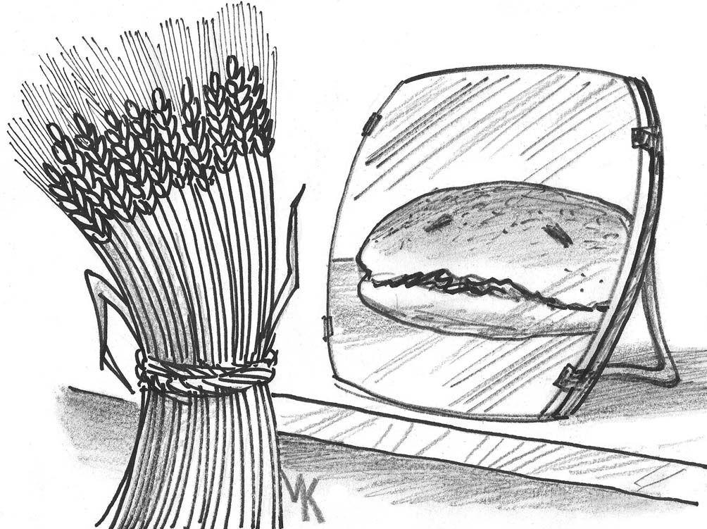 Зерно может подешеветь, хлеб — вряд ли