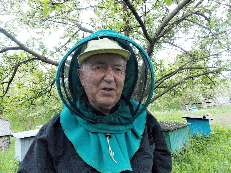 Як цивілізувати дикий ринок меду