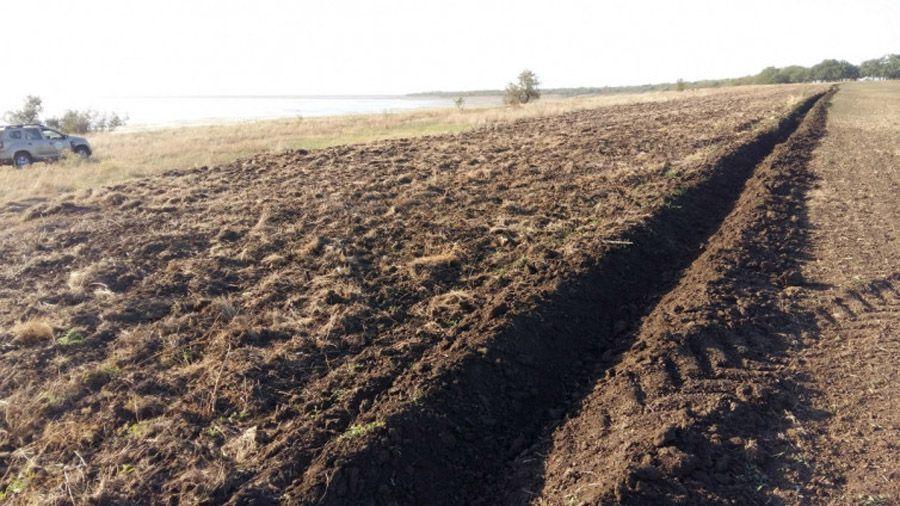 На Одещині фермери розорали «Тузловські лимани»