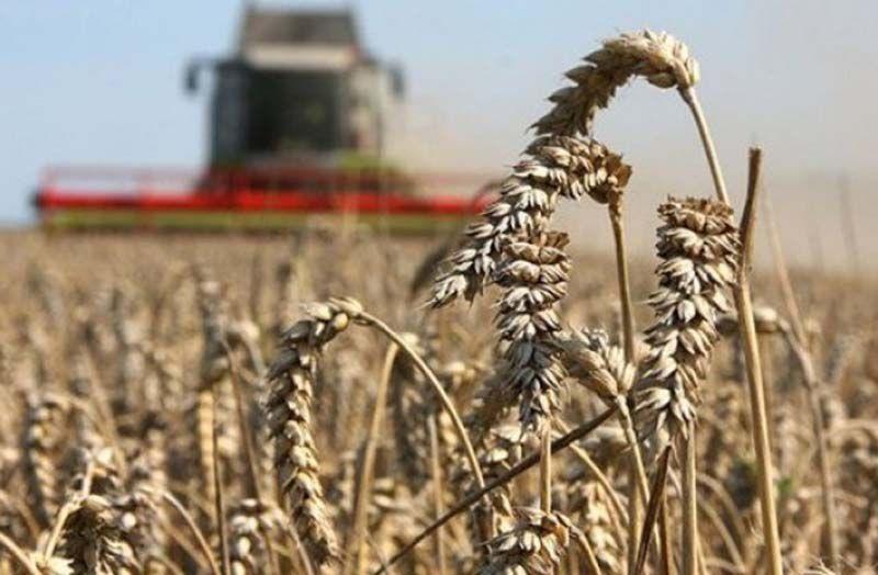 Як підтримати аграріїв, коли ресурс обмежений