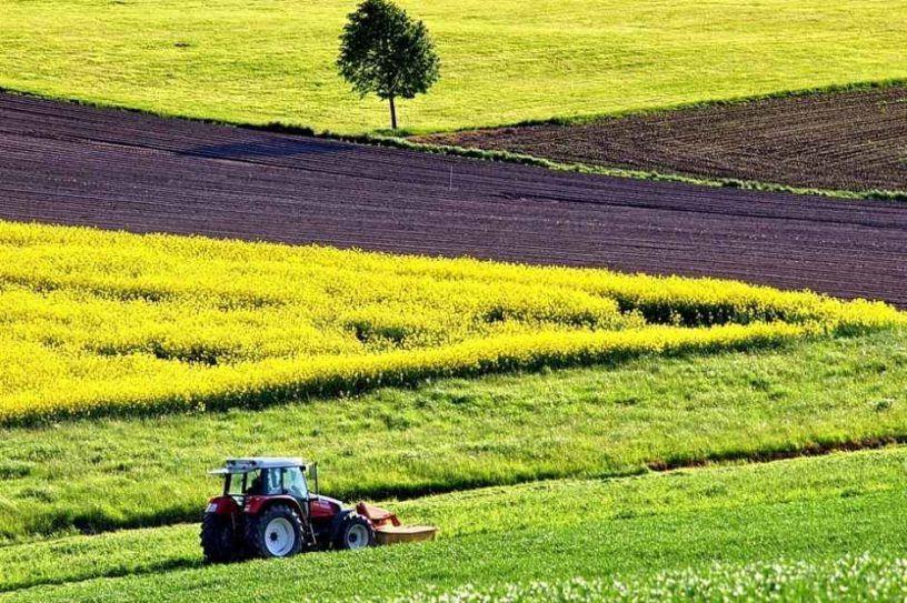 На Черкащині орендарі земель розраховуватися не поспішають