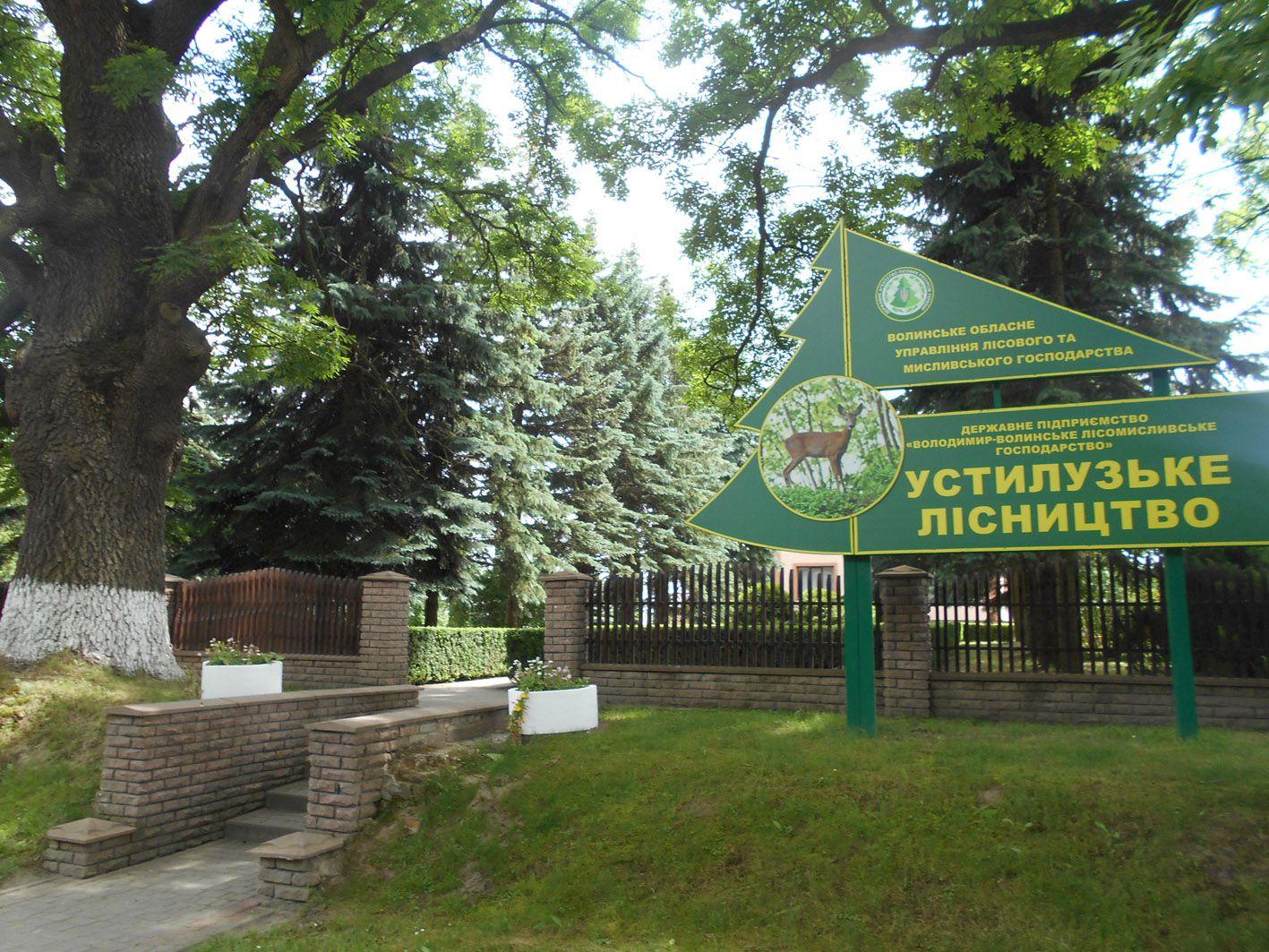 Во Владимир-Волынском районе отсудили лес