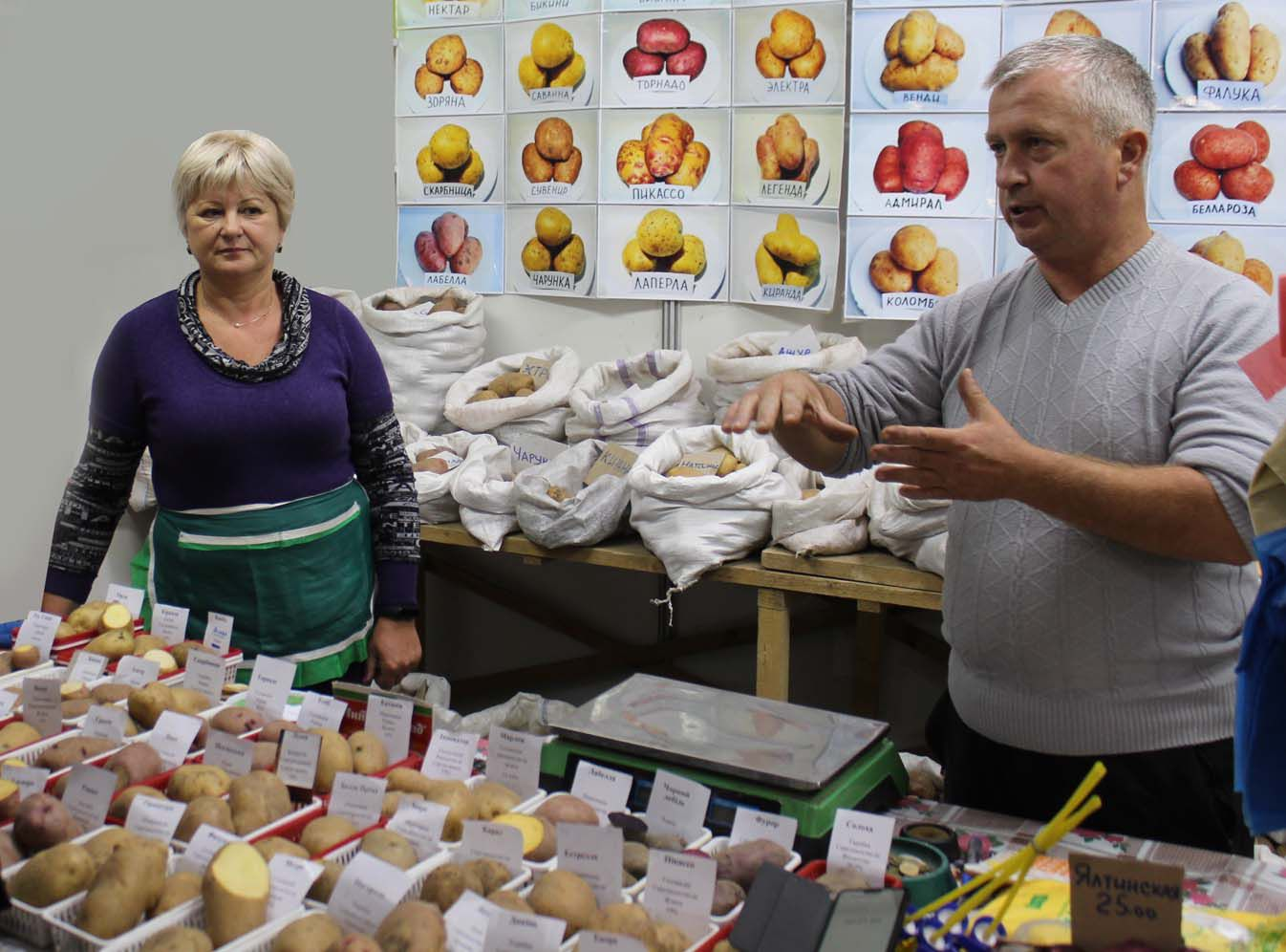Чеботаревы — картофелеводы-испытатели