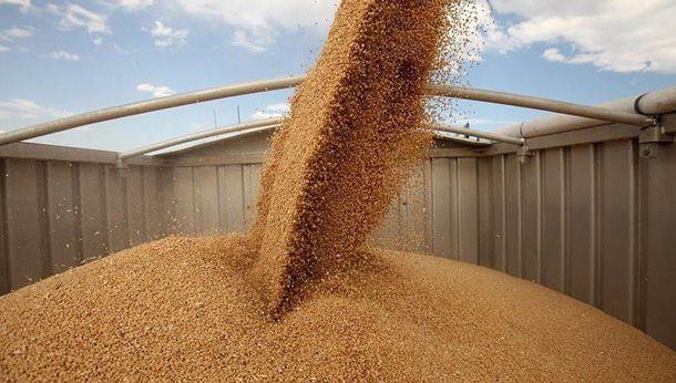 1,3 млн тонн зерновых культур было отгружено на экспорт морпортами Украины