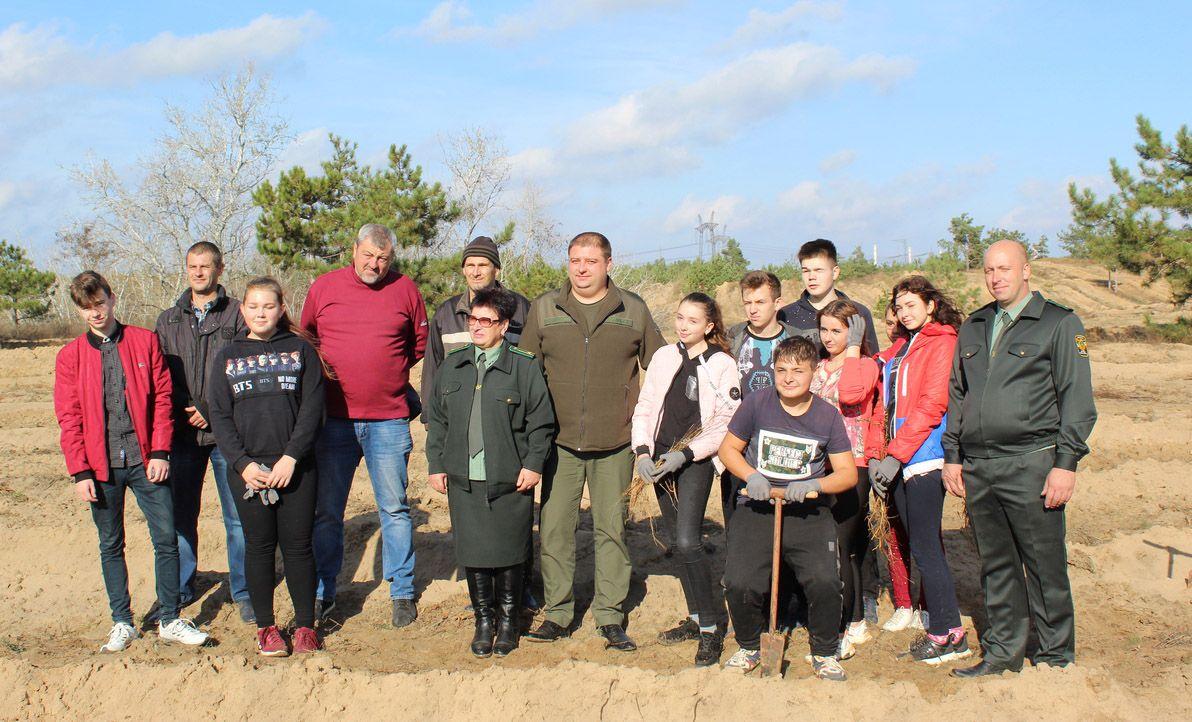 В Запорожской области зазеленеют леса благодаря школьникам