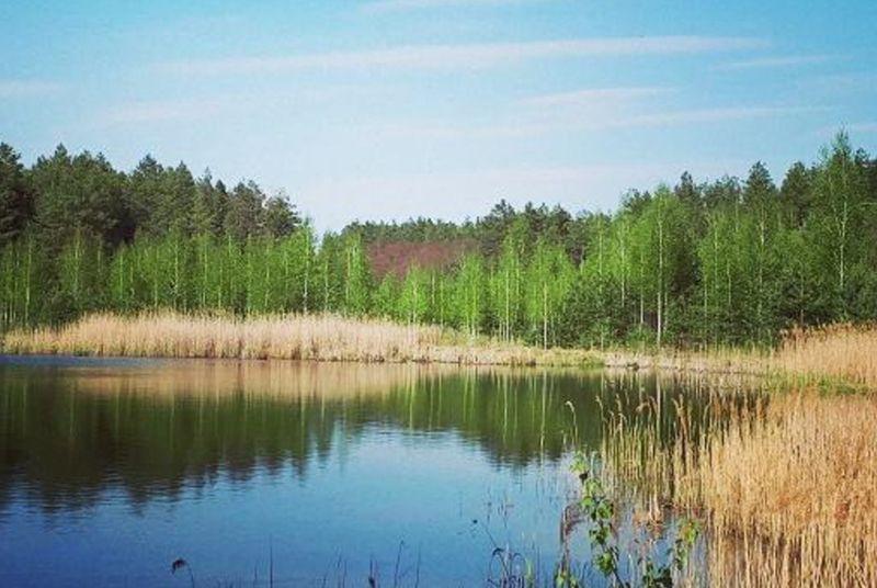 В Охтирці рішуче налаштовані захищати озеро