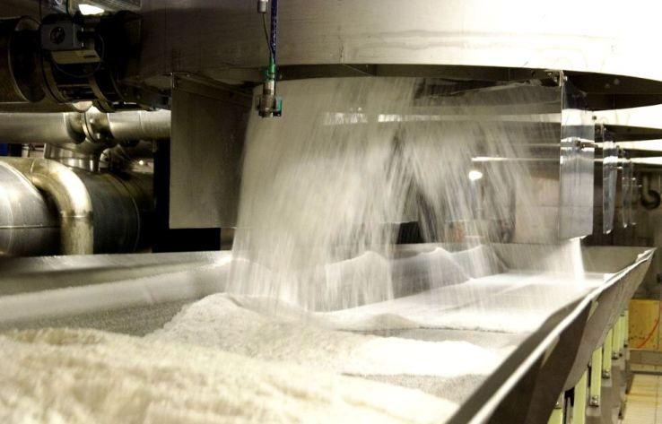 Майже 1,4 млн тонн цукру зварили заводи України