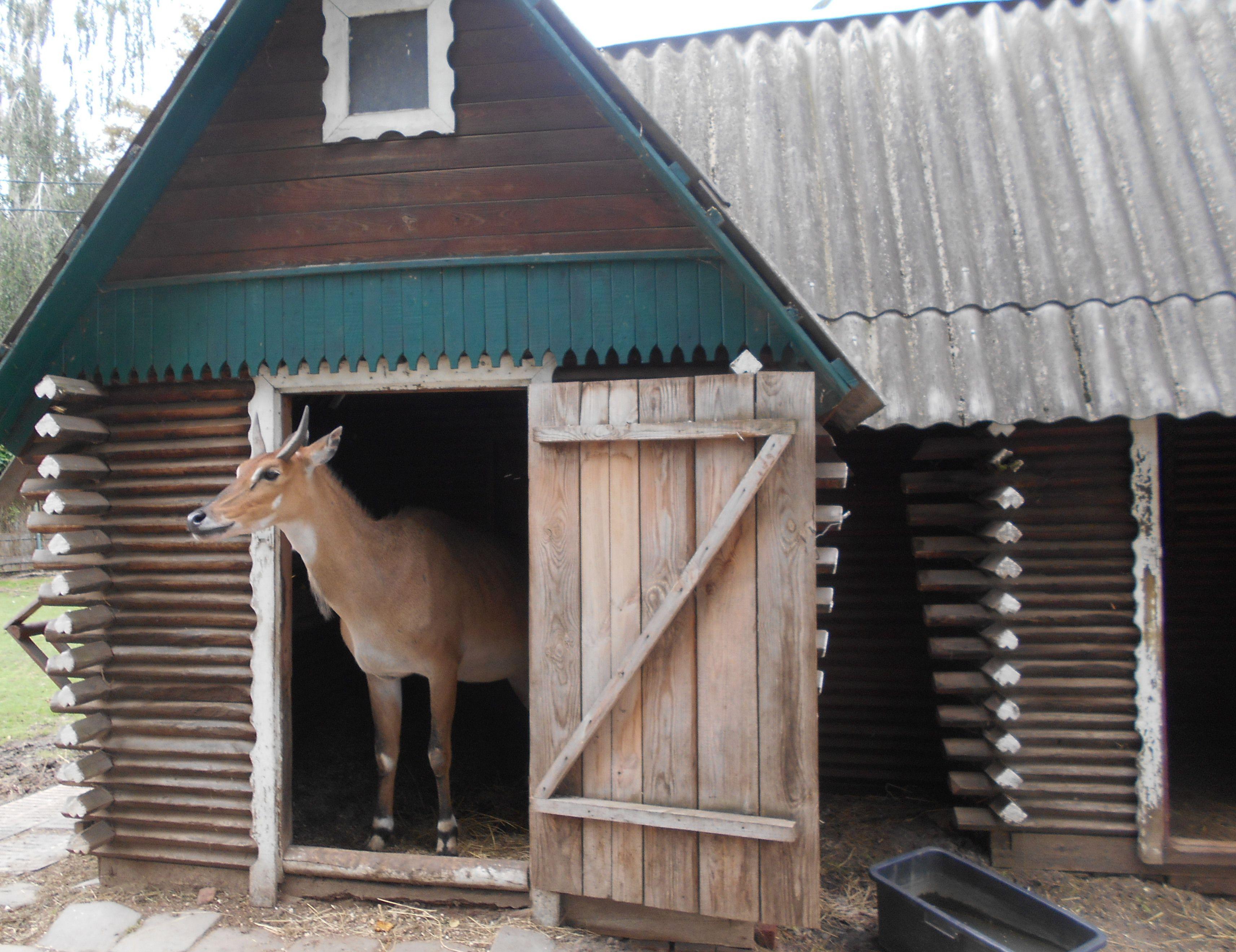 Волынские лесоводы поддерживают зоопарк