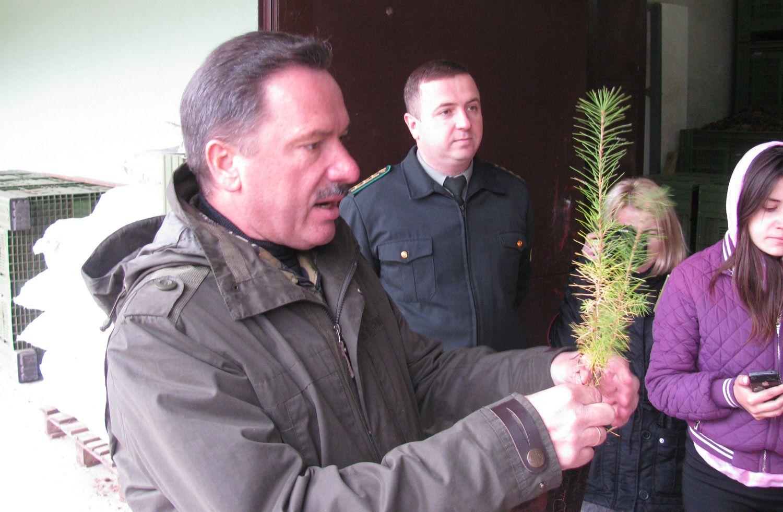 Саджанці з Львівщини експортуватимуть до Європи