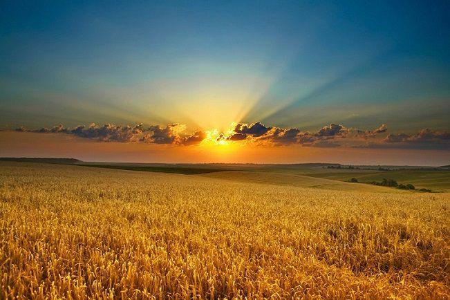 Земля — это что-то больше, чем просто товар