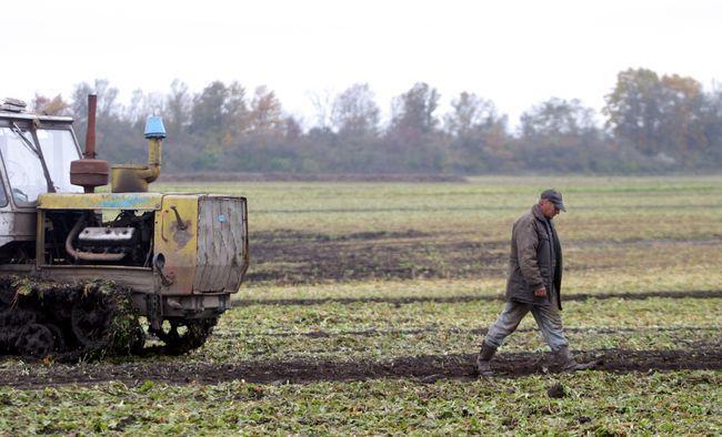 На Черкащині власникам паїв виплатили 2,8 млрд грн
