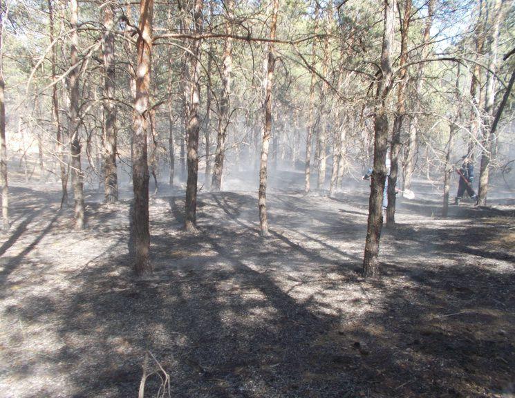 На Херсонщині нікому буде гасити пожежі