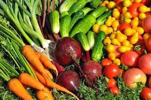 Де взяти насіння овочів?