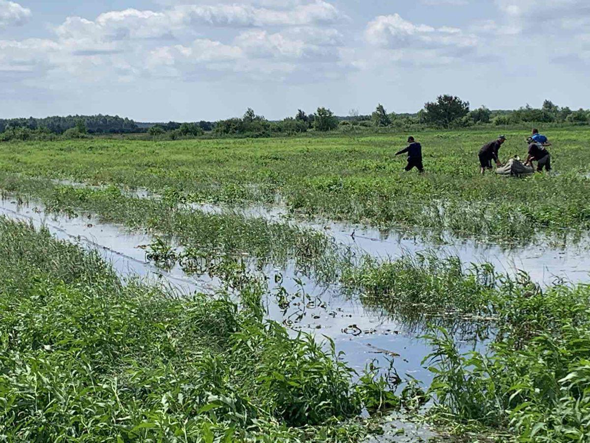 Волынь: Под водой урожай и надежда крестьян