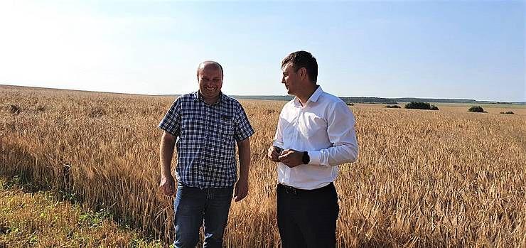 Івано-Франківщина: Збирають багато, та зерно невиповнене