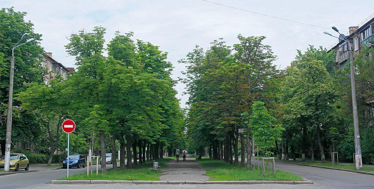 Вместо улицы Саратовской — бульвар Павла Вирского