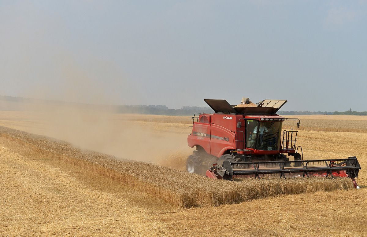 Аграрії країни зростили рекорд