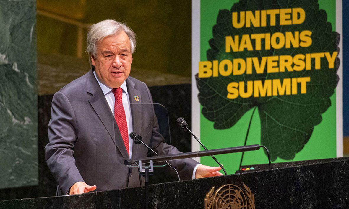 Биоразнообразие — важнейшее условие прогресса человечества