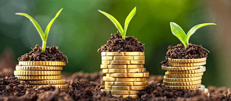 Херсонщина: Одноосібники почали більше заробляти