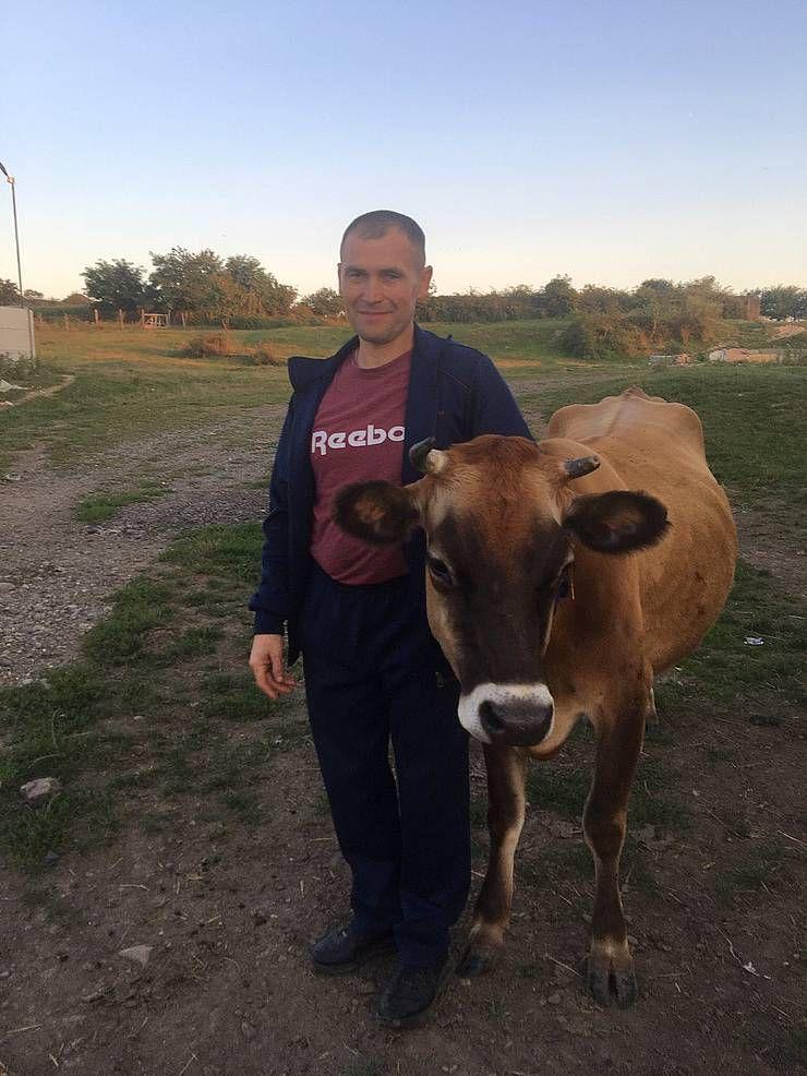 Во дворах и на фермах поголовье коров сократилось в разы