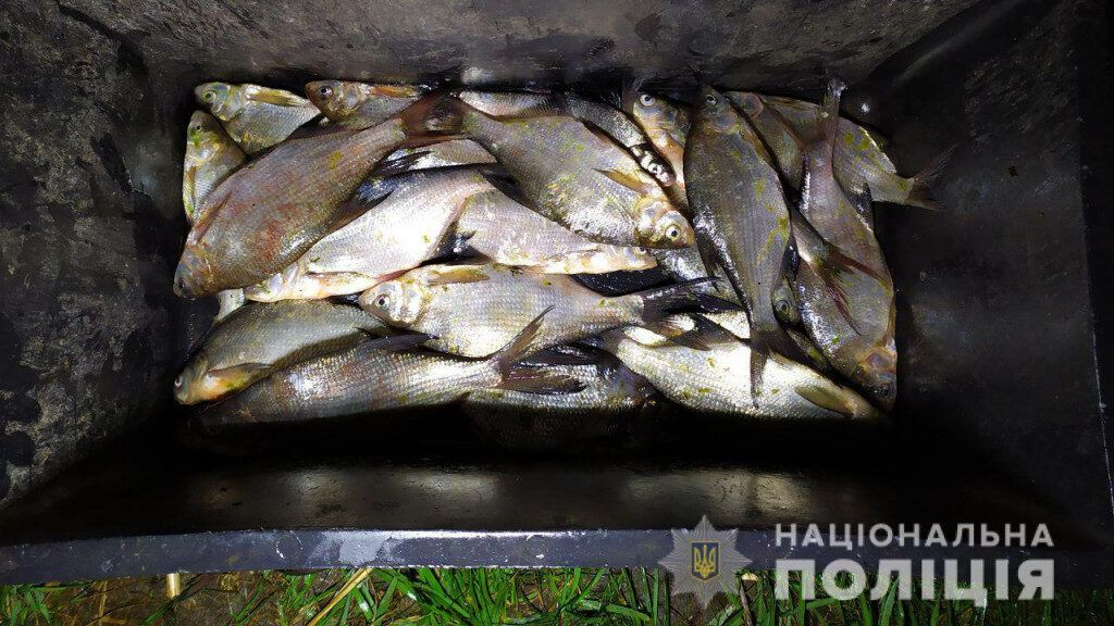 Чернігівщина: Браконьєрством займалися рибоохоронці