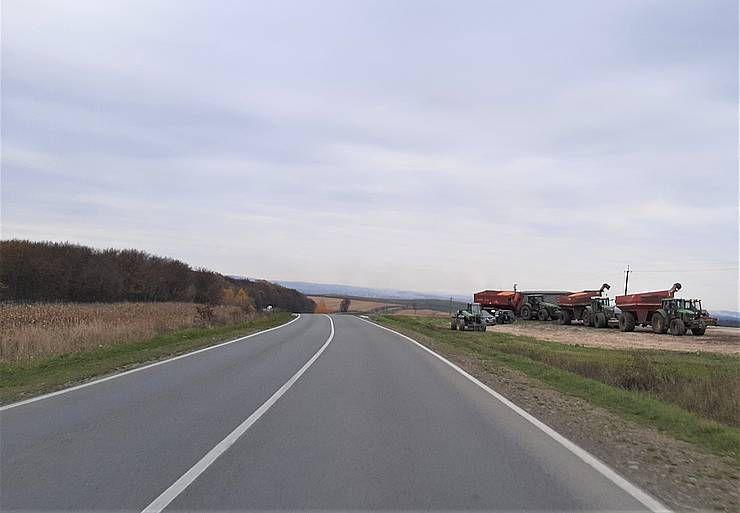 Прикарпатье: Кукуруза подтягивает вал
