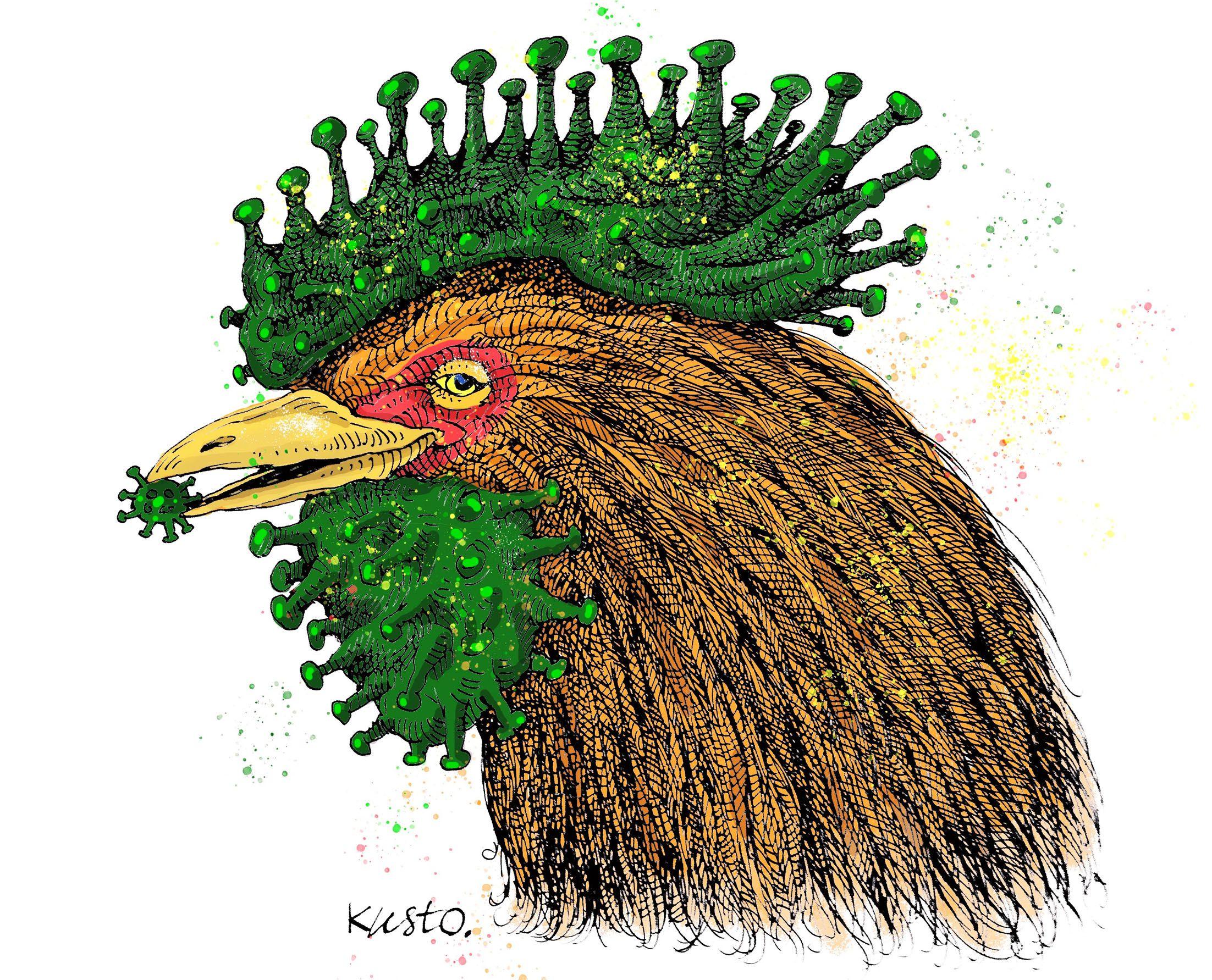На Херсонщині ще й пташиний грип не відступає!
