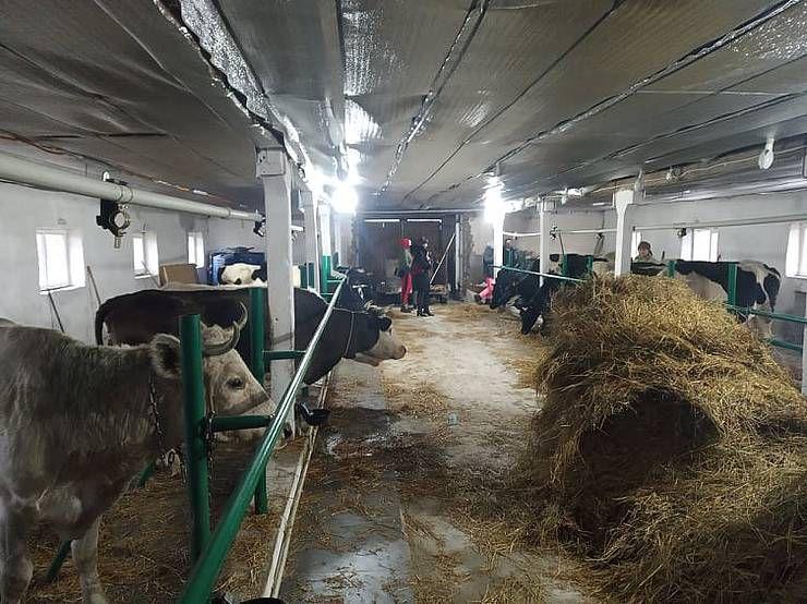 В Марковке появилась семейная ферма