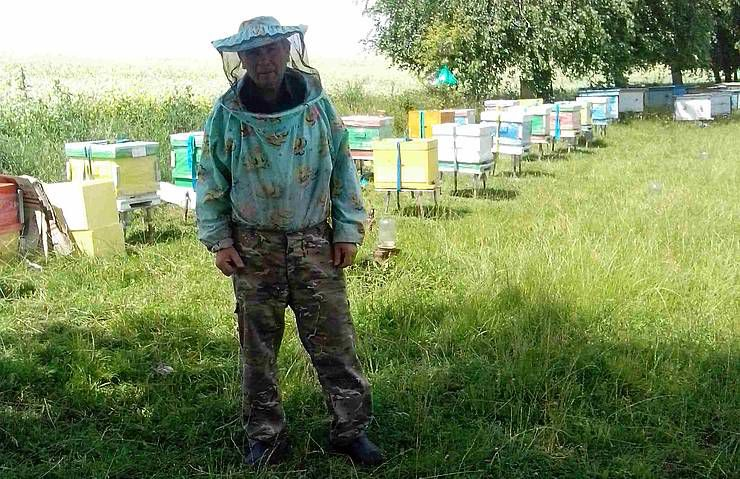 Делает ульи с прозрачной стенкой, чтобы увидеть, как работают пчелы