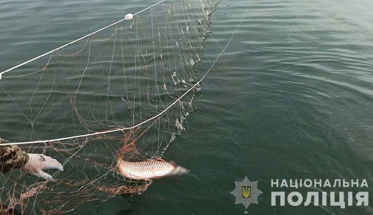 Херсонщина: Поклали край браконьєрській вакханалії