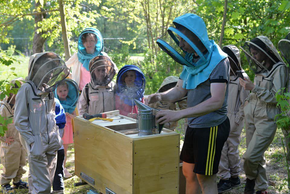 В Киевской области привлекают к пчеловодству
