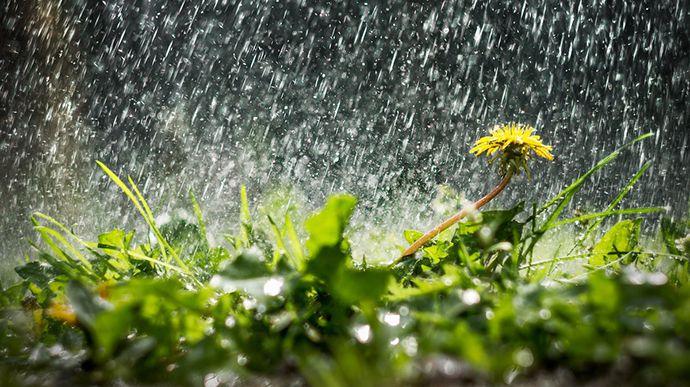 Херсонщина: Замало води — біда, забагато — лихо