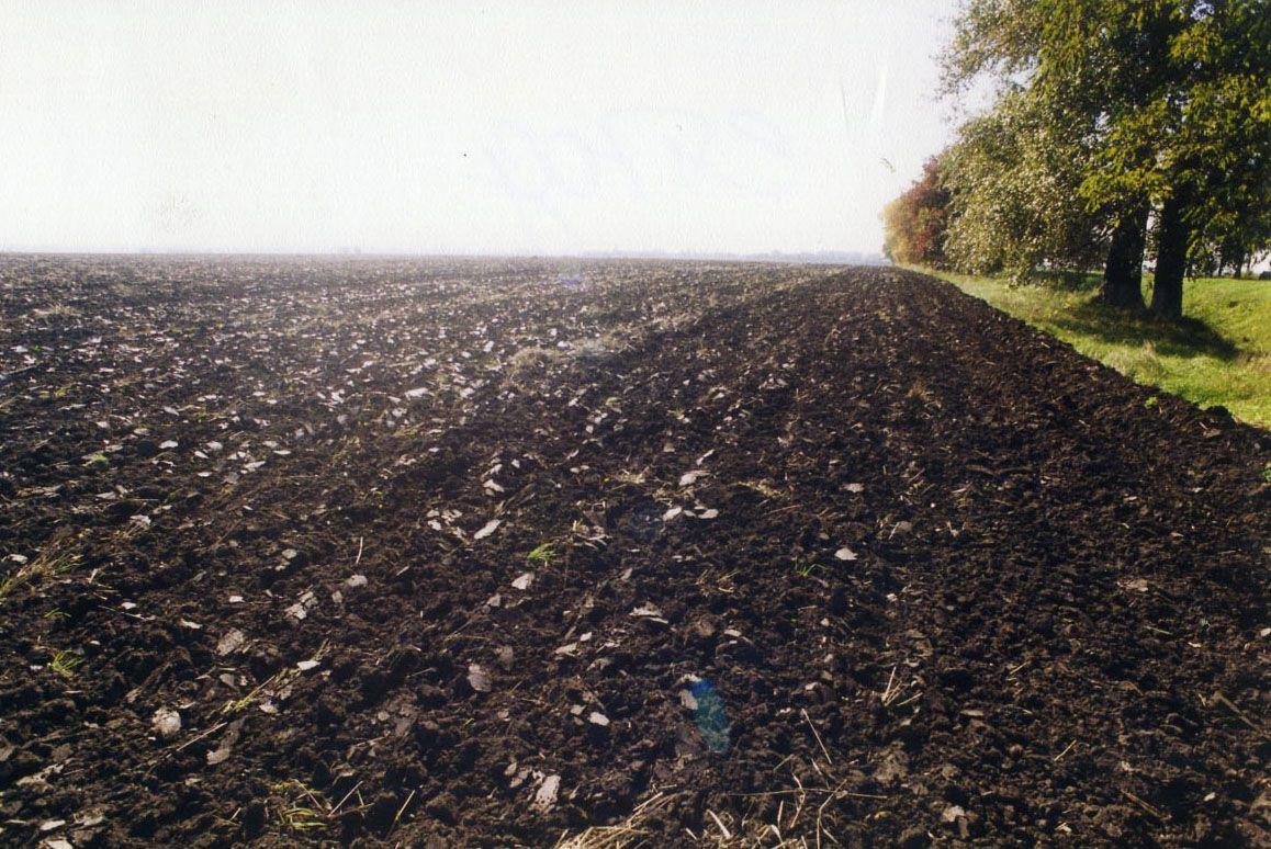 На Запорожье дерибанят земли