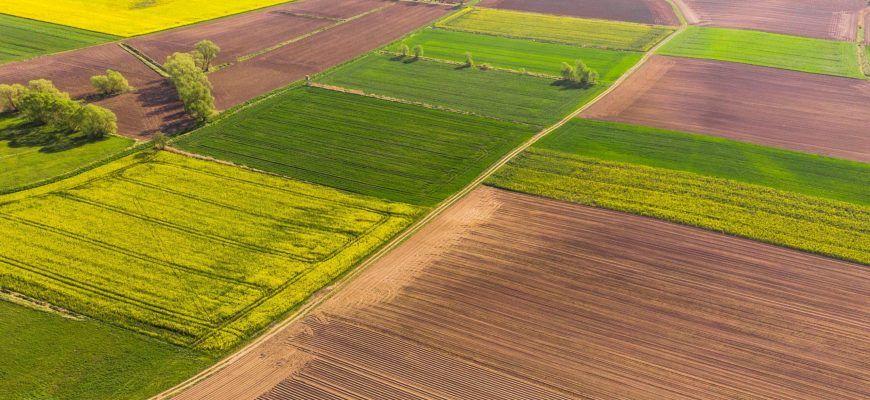 Кировоградщина — лидер по объемам продаж земли