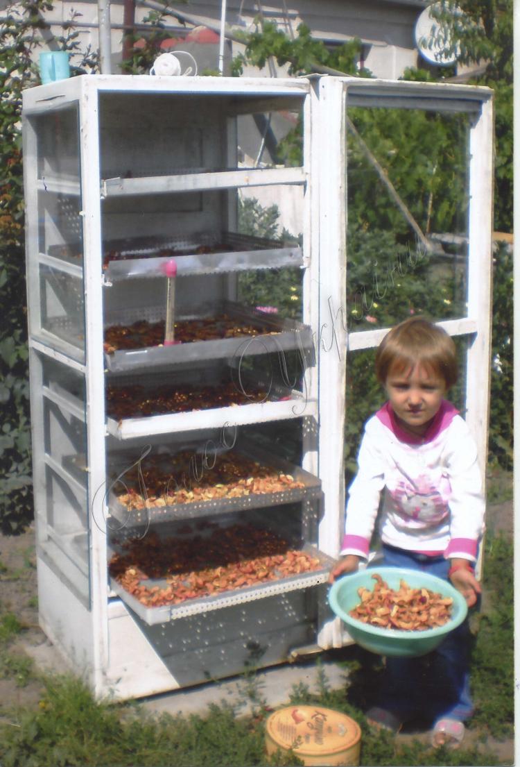 Холодильник своими руками из старого холодильника 708