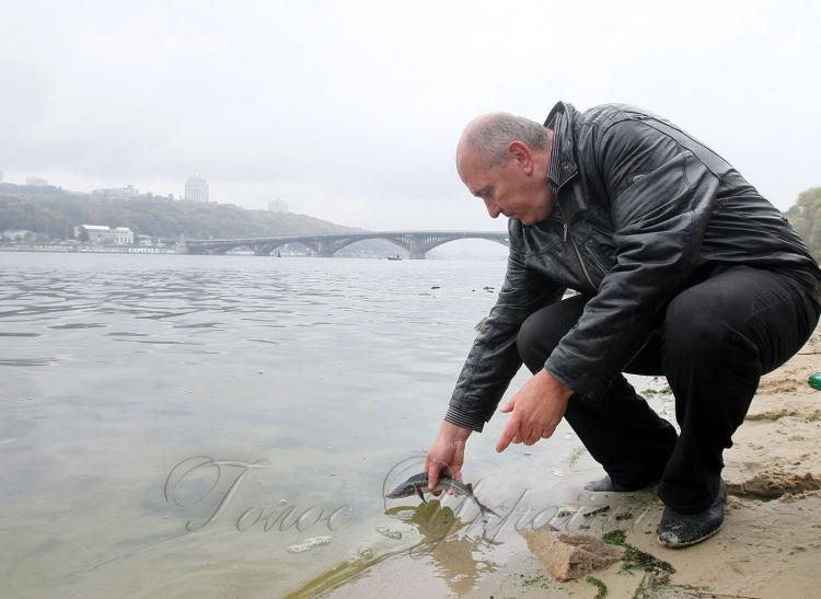 чистяков александр связь рыболовов