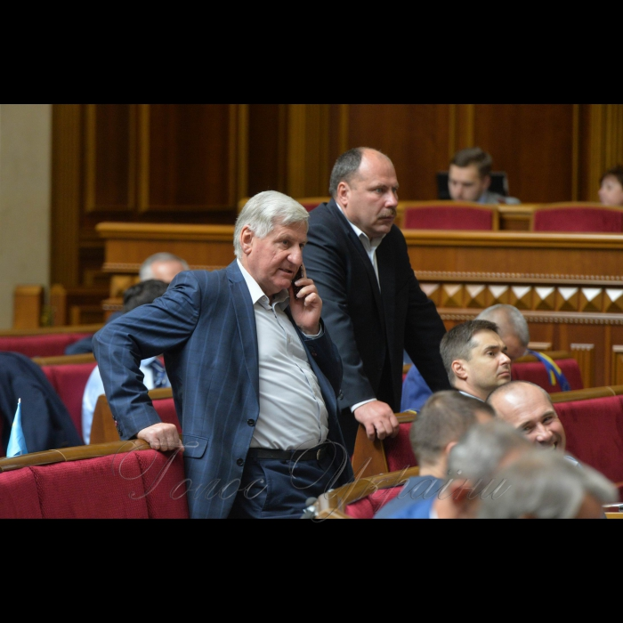 23 травня 2018 сесія Верховної Ради України. Микола Лаврик.