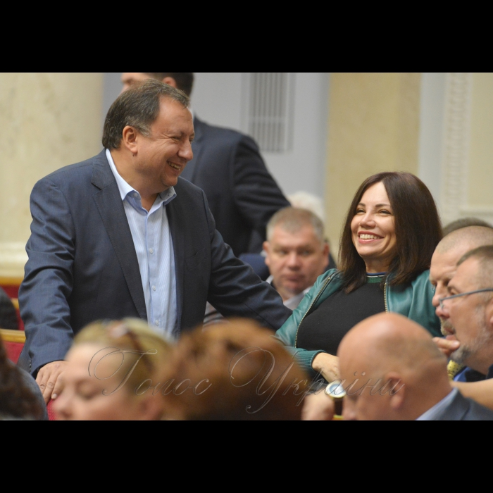 18 жовтня 2018 пленарне засідання Верховної Ради України. Микола Княжицький, Вікторія Сюмар НФ.