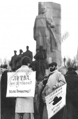 Мітинги. Січень-лютий 1991 року